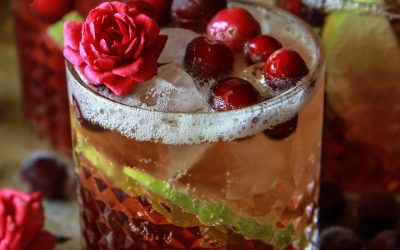 Thanks(for)Giving Me This Cocktail: The Apple Cranberry Moscow Mule